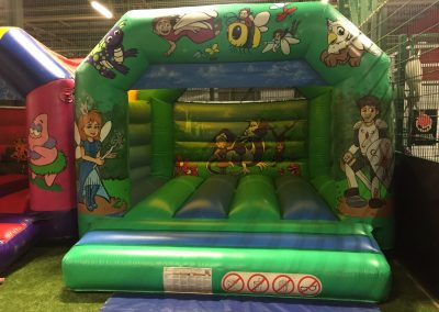 Small/Child Bouncy Castle