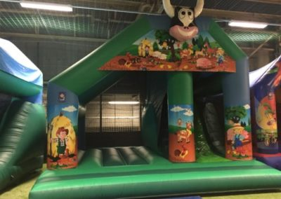 Play and Slide Castle